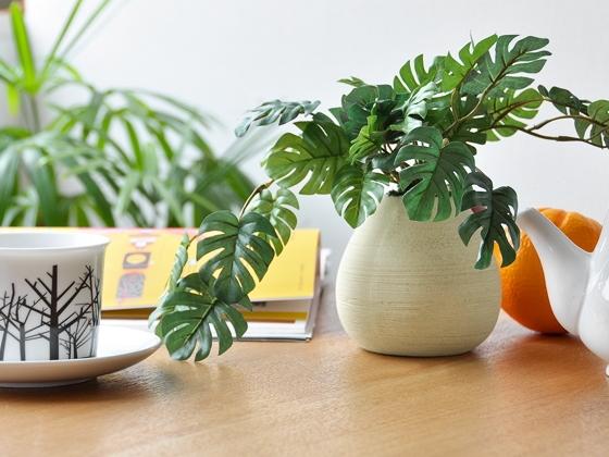 観葉植物を取り入れる