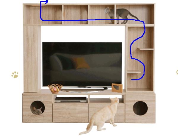 テレビ台猫